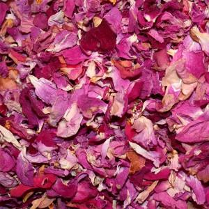 p tales de roses frais comme fleurs du mariage. Black Bedroom Furniture Sets. Home Design Ideas