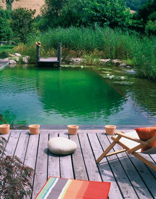 Avoir une piscine naturelle dans sa maison for Avoir une piscine